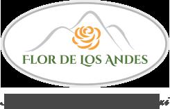 referinta-google-adwords-flor-de-los-andes