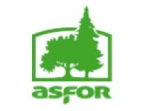 ASOCIATIA FORESTIERILOR DIN ROMANIA – ASFOR
