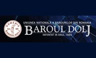 baroul dolj logo
